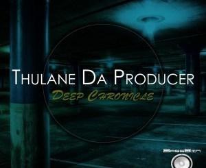Thulane Da Producer – Deep Chronicle