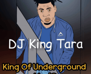 Dj King Tara – Parasite Dance (Main Mix)
