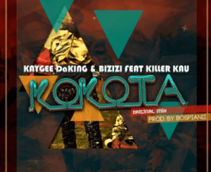 Kaygee & Bizizi – Kokota Piano (Dj TeeSoul Revisit)