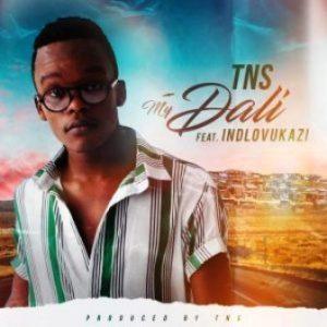 TNS – My Dali Ft. Indlovukazi (Techno Bros & House Villains Bootleg)