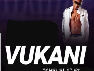 Vukani Ft. Kabza De Small – Shelela