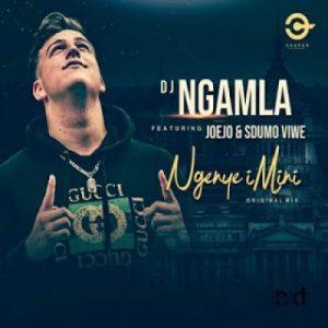 DJ Ngamla – Ngenye Imini Ft. Sdumo Viwe & Joejo