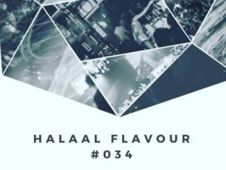 Halaal Flavour #034 Mixed & Compiled by Entity MusiQ & Lil'Mo