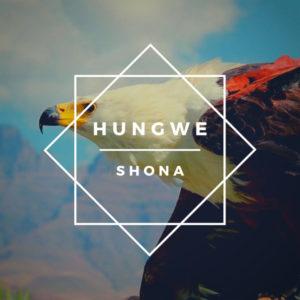 Shona (SA) Ft. Zimkitha – Ndiyekele