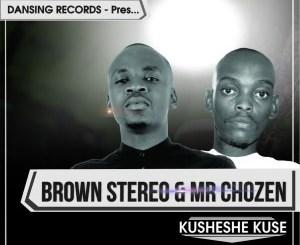 Brown Stereo, Mr Chozen – Kusheshe Kuse (Instrumental)
