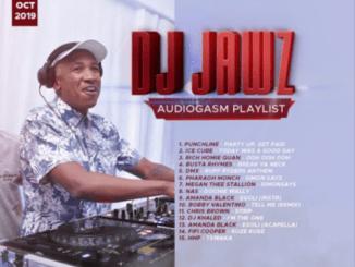 DJ Jawz – The No.1 Party DJ Mix #23 (Audiogasm Playlist)