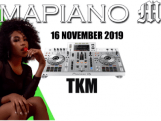 DJ TKM – Amapiano Mix November 2019