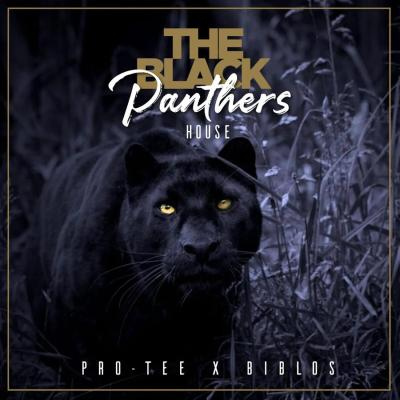 Pro-Tee & Biblos – Black Panther House