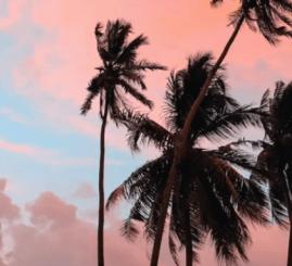 Dario Nunez Feat. Estela Martin – Dulce Sabor Del Pecado (Original Mix)