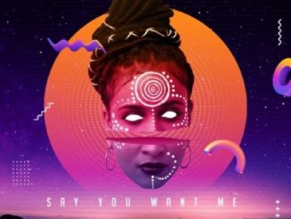 Skindeep ft Dee Cee – Say You Want Me