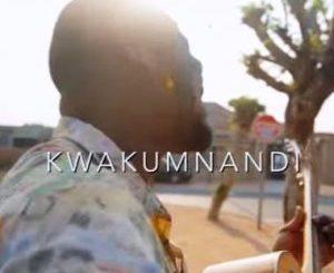 Wandile Mbambeni – Kwakumnandi