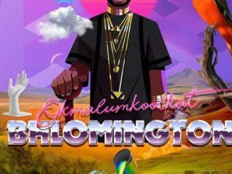 EP: Okmalumkoolkat – Bhlomington