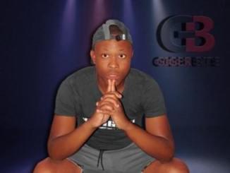 DJ Aplex SA – Isikhalo Sabaphantsi Ft. Bobstar no Mzeekay
