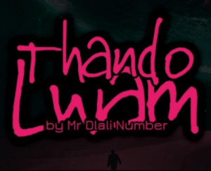 Mr Dlali Number – Thando Lwam
