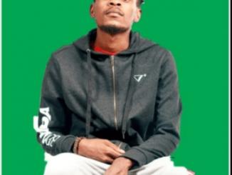 King Salama, Chillibite & Lesmahlanyeng – O Ngwana Mang Ft. Quayr Music (Original)