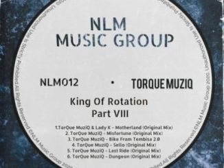 EP: TorQue MuziQ – King Of Rotation Part VIII