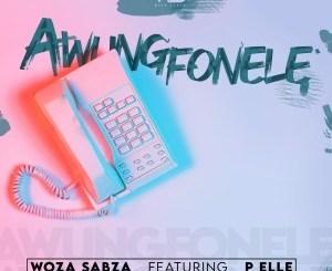 Woza Sabza – Awungfonele Ft. P Elle