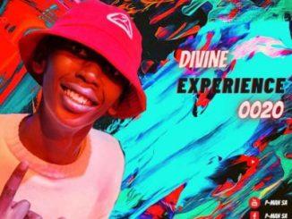 P-Man SA – Divine Experience 0020 Mix (Festive Jump)