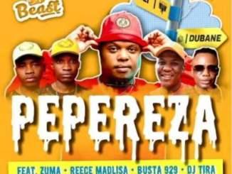 Beast – Pepereza Ft. DJ Tira, Reece Madlisa, Zuma, Busta 929