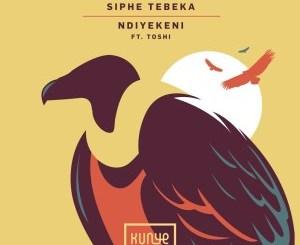 Siphe Tebeka, Toshi – Ndiyekeni (Edit)