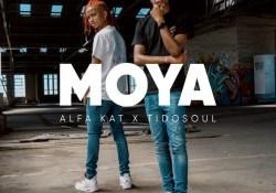 Alfa Kat & TidoSoul – Falling Ft. Leandra Vert