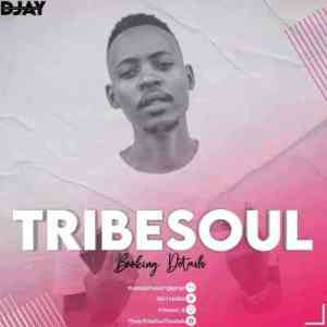 TribeSoul & Bido Vega – Nkulee