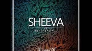 Ronny Santana – Sheeva (Original Mix)