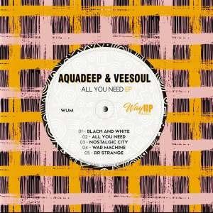 Aquadeep & Veesoul – All You Need