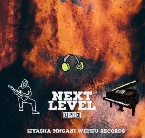 DJ Pelco – Next Level (Original Mix)
