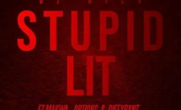 dj-rico-–-stupid-lit-ft-makwa-dxffxrnt-options