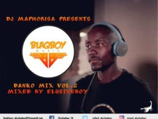 Dj Maphorisa Danko Mix Vol.2 (Guest Mix By Elusiveboy SA) Mp3 Download