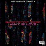 SweetRonic Deep – Can I Feel It (Original Mix)