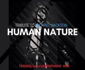 TekniQ SA Tribute to Michael Jackson (Human Nature) Amapiano Mix Mp3 Download