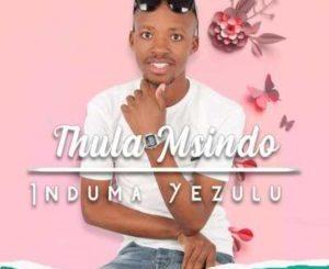 Thula Msindo Tman Mr Kwenzela Mp3 Download (Support)