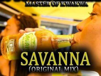 Dj young killer SA Savanna Mp3 Download