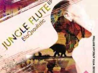 DOWNLOAD BlaQsoulistic Jungle Flute Album EP Zip
