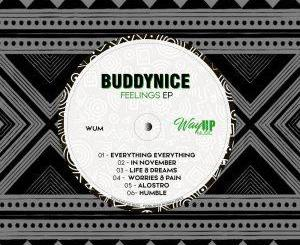 Buddynice Feelings Ep Download