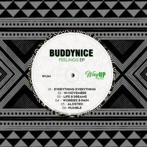 Buddynice Feelings Ep Download