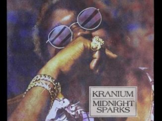 Kranium ft Ty Dolla $ign & Burna Boy Hotel Mp3 Download
