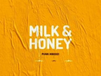 DOWNLOAD Punk Mbedzi Milk & Honey EP Zip