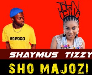 Shaymus Tizzy Sho Majozi Mp3 Download