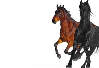 Lil Nax Old Town Road Amapiano Remake Ft. Bill Ray Cyprus Mp3 Download