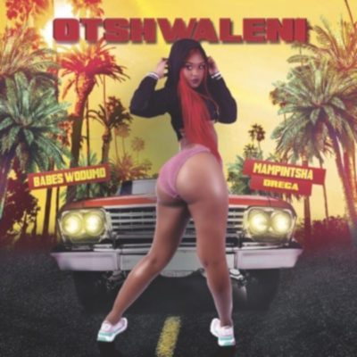 Babes Wodumo Otshwaleni Ft. Mampintsha & Drega Mp3 Video Download