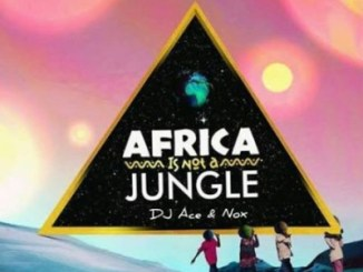 DJ Ace & Real Nox Africa is not a Jungle Mp3 Download