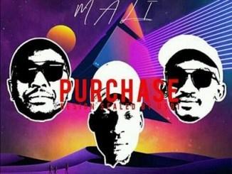 DJ Slema ft Tsebe Boy & Tebza Ngwana Mali Mp3 Download