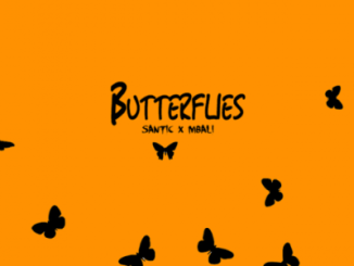 Santic Butterflies Ft. Mbali Mp3 Download