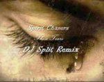 Spiritchaser – These Tears (DJ Split Amapiano Remix)