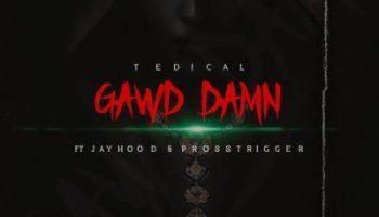 Tedical Gawd Damn Ft. Jayhood & Pross Trigger Mp3 Download