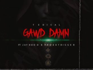 Tedical Gawd Damn Ft. Jayhood & Pross Trigger Mp3 Download