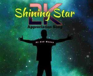 DJ Red Money Shining Star Mp3 Download